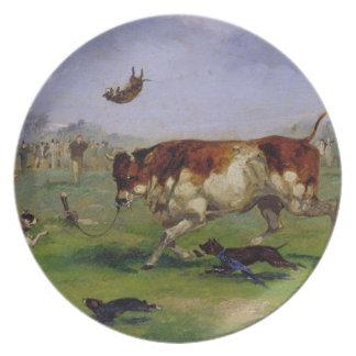 Atracção de Bull (óleo no papel colocado no painel Prato