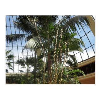 AUGE com a ARTE: Interiores VERDES RICOS de Las Ve Cartões Postais