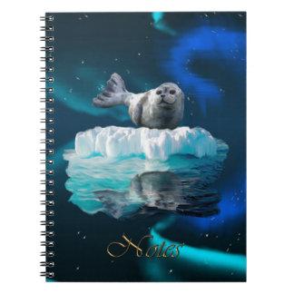Aurora boreal, Floe de gelo & caderno dos animais
