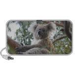 Auto-falante do Portable do Koala Caixinha De Som De Viagem