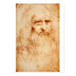 Auto-Retrato de Leonardo da Vinci cerca de 1510-15 Cartões Postais