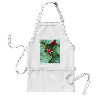 Avental Corinto alpino (alpinum do Ribes)