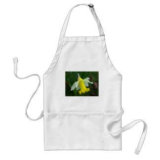 Avental - Daffodil amarelo