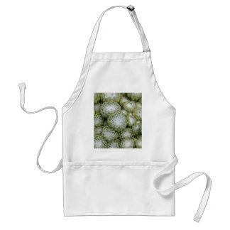 Avental Folhas de um alho-porro da casa do cobweb, arachno