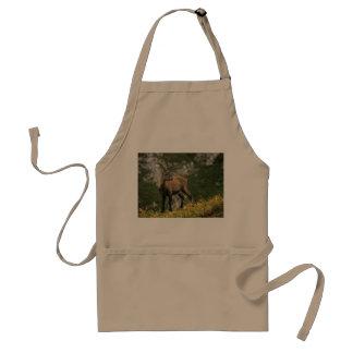 Avental Íbex selvagem alpino, da cabra, ou steinbock
