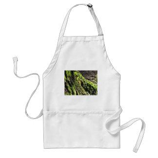 Avental O musgo verde no detalhe da natureza de musgo