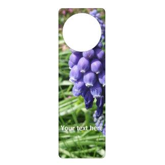Aviso De Porta Muscari roxo da flor do jacinto de uva