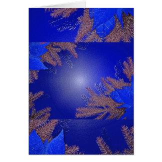 Azul da poinsétia do Natal