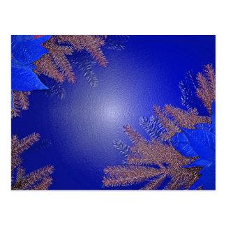 Azul da poinsétia do Natal Cartões Postais