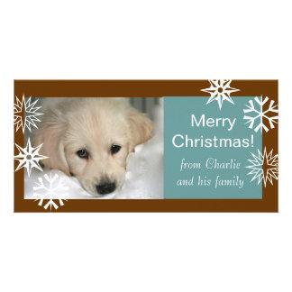 Azul de Brown dos cartões de foto de Natal do cão Cartão Com Foto