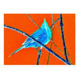 Azul e laranja cartão postal