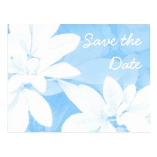 """Azul macio das folhas """"economias cartão da data"""" cartão postal"""