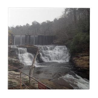 Azulejo da cachoeira