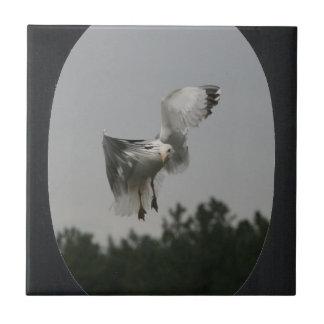 Azulejo De Cerâmica Adicione o quadro oval da foto (o preto)