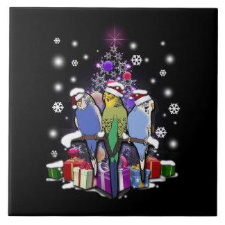 Azulejo De Cerâmica Budgerigars com presente e flocos de neve do Natal