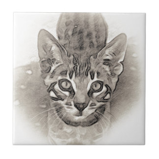 Azulejo De Cerâmica Desenho bonito do gatinho de Bengal