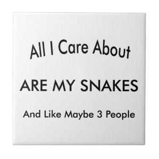 Azulejo De Cerâmica Eu amo meus cobras
