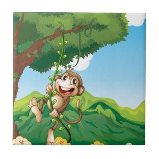 Azulejo De Cerâmica Macaco