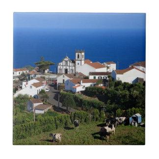 Azulejo De Cerâmica Nordeste - Açores