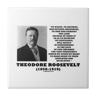 Azulejo De Cerâmica O desperdício de Theodore Roosevelt destrói