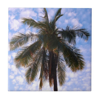 Azulejo De Cerâmica Palma de coco