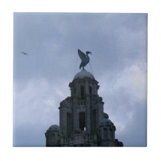 Azulejo De Cerâmica Pássaro do fígado em Liverpool