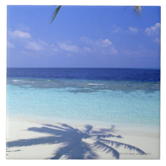 Azulejo De Cerâmica Sombra da palmeira
