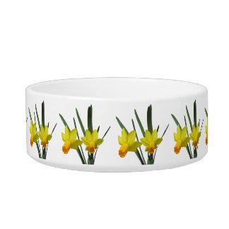 Bacia - Daffodil Tijelas Para Comida De Gatos