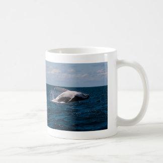 Baleia de Humpback que rompe o paraíso dos Caneca De Café