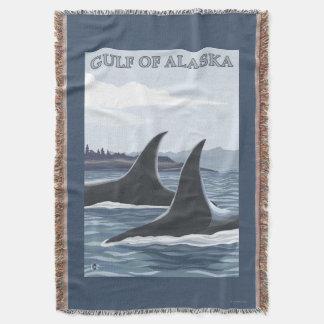 Baleias #1 da orca - o Golfo do Alasca Coberta