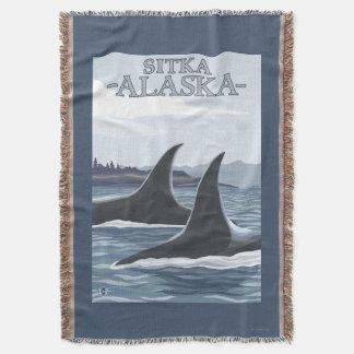 Baleias #1 da orca - Sitka, Alaska Manta