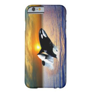 Baleias no por do sol capa barely there para iPhone 6