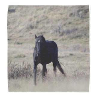 Bandana do cavalo