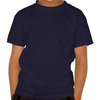 Bandeira americana dentro de um coração grande t-shirts