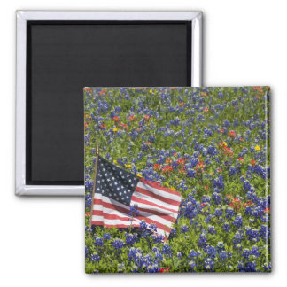 Bandeira americana no campo das capotas azuis, 2 imãs