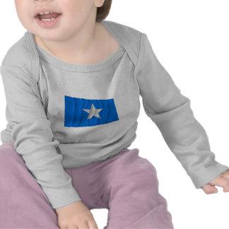 Bandeira azul Bonnie/para o oeste bandeira da