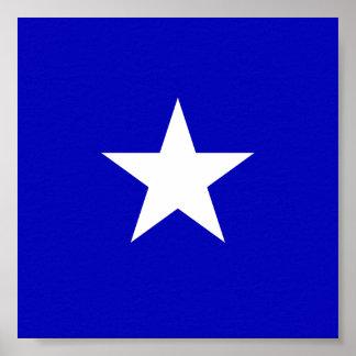 Bandeira azul Bonnie Pôster