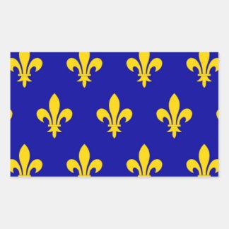 Bandeira de Touraine (France) Adesivos Em Forma Retangular