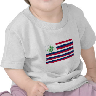 Bandeira naval de Nova Inglaterra Camiseta