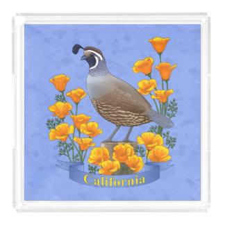 Bandeja De Acrílico Codorniz do pássaro de estado de Califórnia &