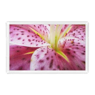 Bandeja De Acrílico Floral magenta brilhante do lírio do Stargazer