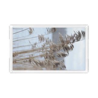 Bandeja De Acrílico Foto cénico calma da grama do lago winter