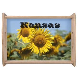 Bandeja do serviço do girassol de Kansas