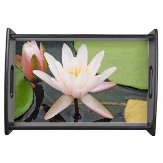Bandeja Flor Lilypads floral de Waterlily do jardim da