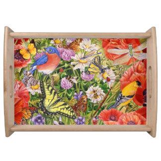 Bandeja Pássaros, borboletas e abelhas