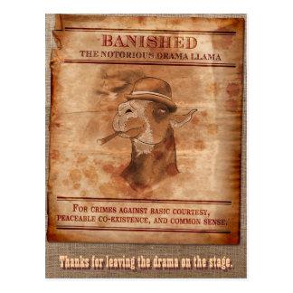 Banish lamas do drama - cartão cartao postal