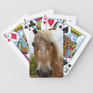 Baralho Adoce o cavalo do Appaloosa,