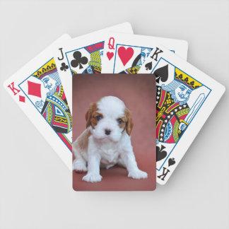 Baralho Para Poker Filhote de cachorro descuidado do Spaniel de rei