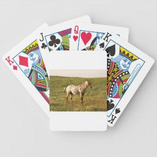 Baralho Para Poker Garanhão manchado do cavalo