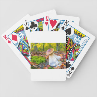 Baralhos De Poker Cogumelo comestível do porcini no assoalho da